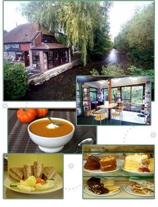 Mustard Seed Coffee Shop Marlborough